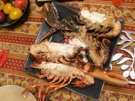 lobster-blog-2