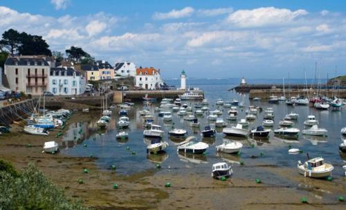 learn french in immersion belle ile en mer brittany