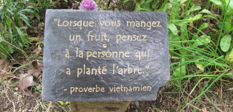 Learn French Garden Vocabulary