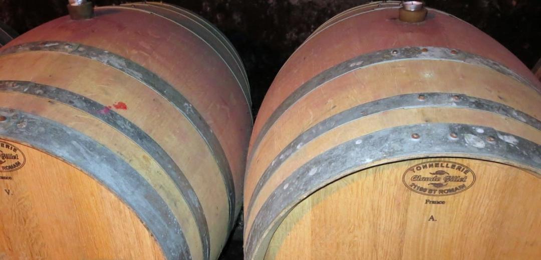 Alsace wine tasting