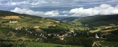 French Immersion in France's Beaujolais Wine Country