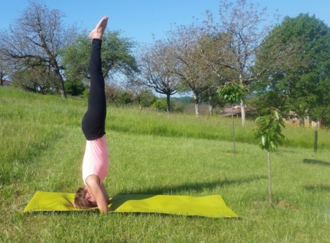 learn french yoga vocabulary postures