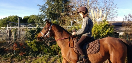 horseback riding french vocabulary
