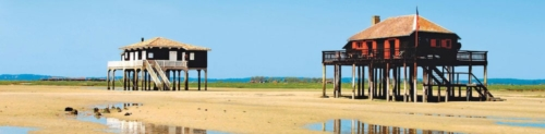 learn french in arcachon