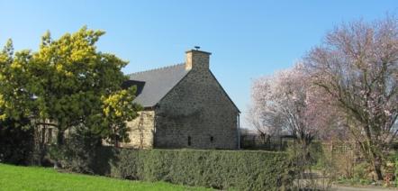 flowering trees french garden