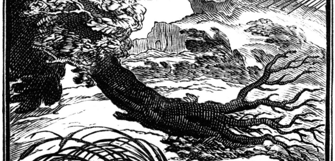 """Le Chêne et le Roseau"" (The Oak and the Reed): the Moral"