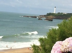 Biarritz beach with hyacinths