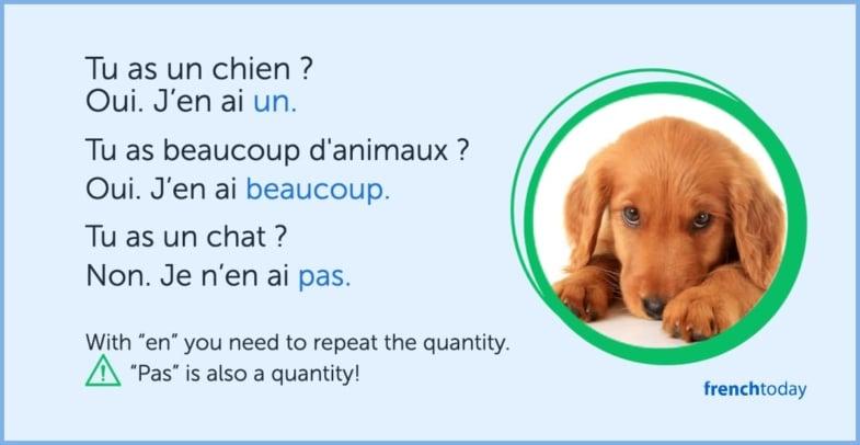 Understanding en French pronoun