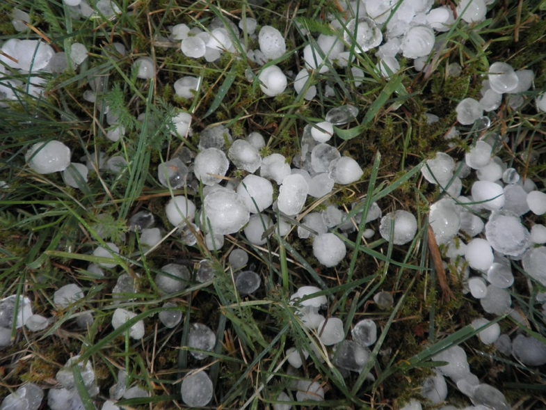 hail in france poetry reading audio