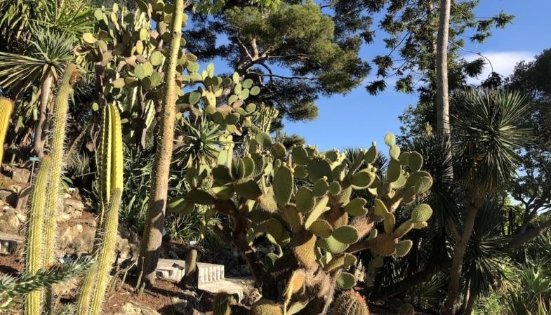 La Villa Ephrussi De Rothschild bilingual story