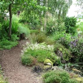 🌷 My Garden – French Story + Translation