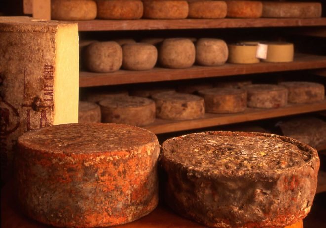 Roquefort cellars