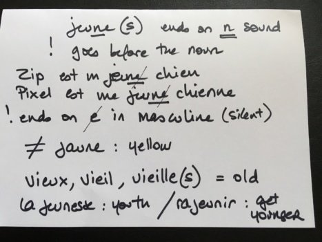 French flashcard - write all kind of relevant information, not just the French word and its translation