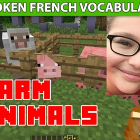 Learn French Vocabulary About Farm Animals With Minecraft – Video