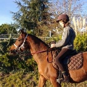 🏇 Horseback Riding in France