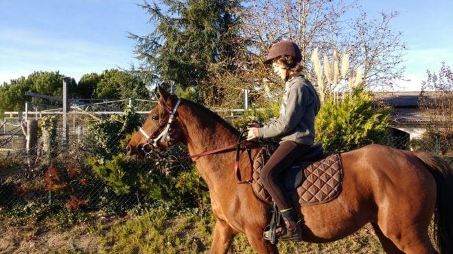 horseback riding french vocabulary
