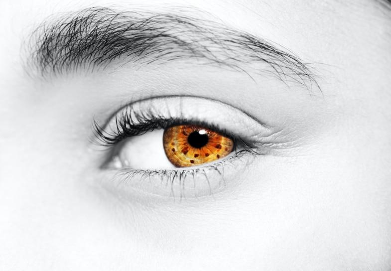 sticking brown eye