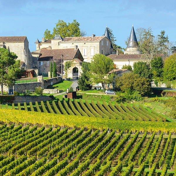 image: Edwige - French Homestay in Bordeaux