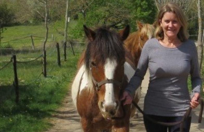 Trec Horseback riding france 2