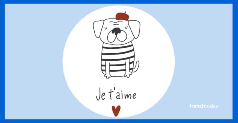 French dog illustration