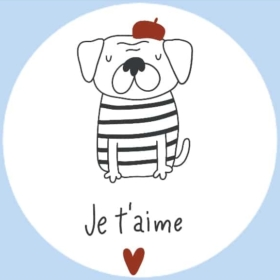 🐩 The Complete French Dog Guide