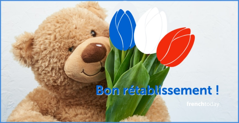 teddy bear with french flowers