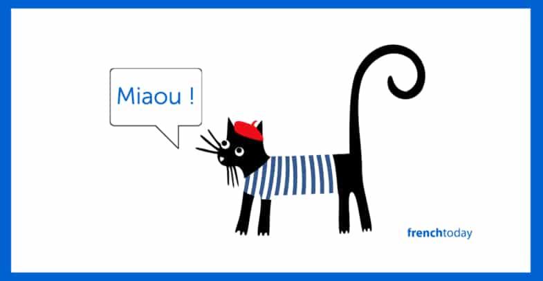 French cat saying Miaou