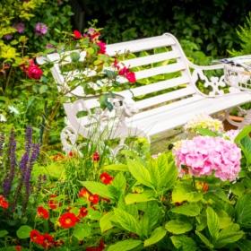 100 French Garden Terms