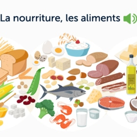 French Food Names With 450 Audio Recordings
