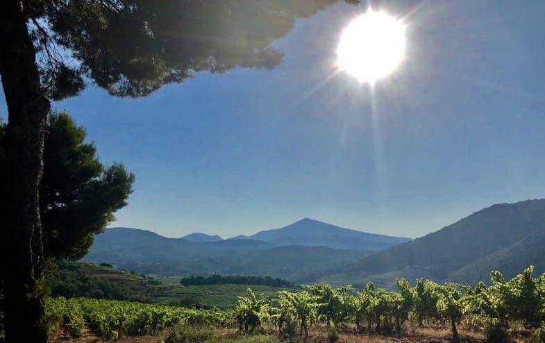 Sunny Provence France